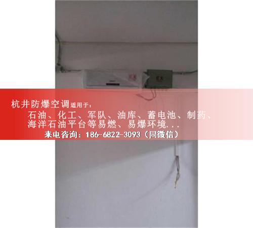 机房带远程控制防爆空调机案例图